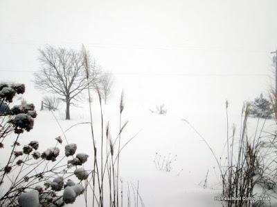 A Snow Day PhotoJournal on Homeschool Coffee Break @ kympossibleblog.blogspot.com