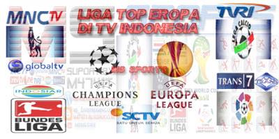 Jadwal Bola Liga Inggris 12-13 Januari 2013