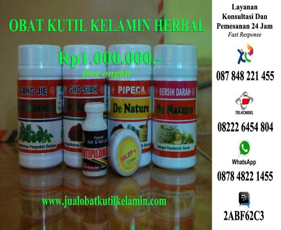 Obat Kutil Kelamin Herbal Alami