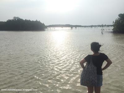 Olango Island Cebu Wildlife Sanctuary 1