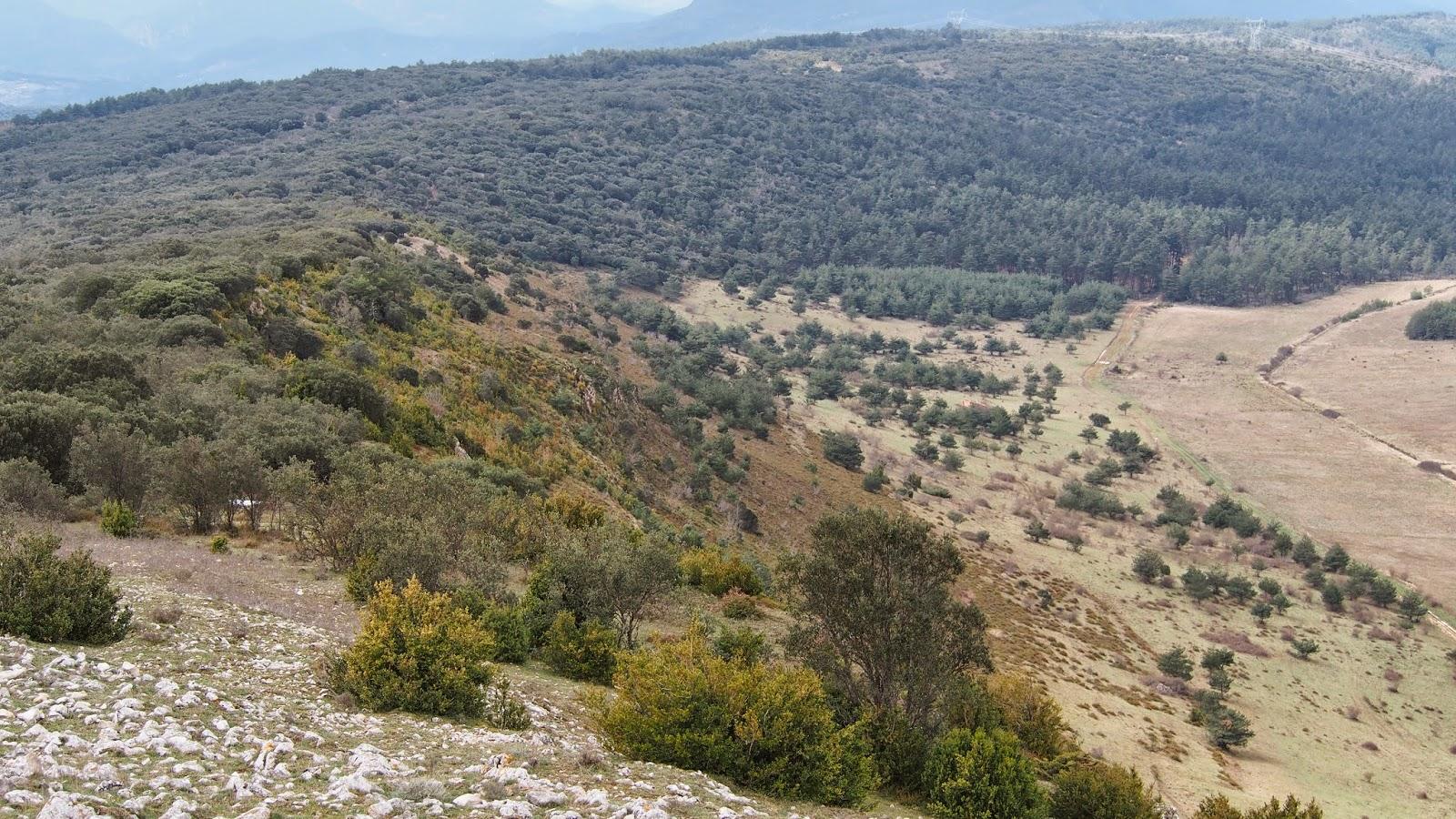asqueroso negro aficionado cerca de Burgos