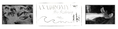 Anadromy Fly Fishing