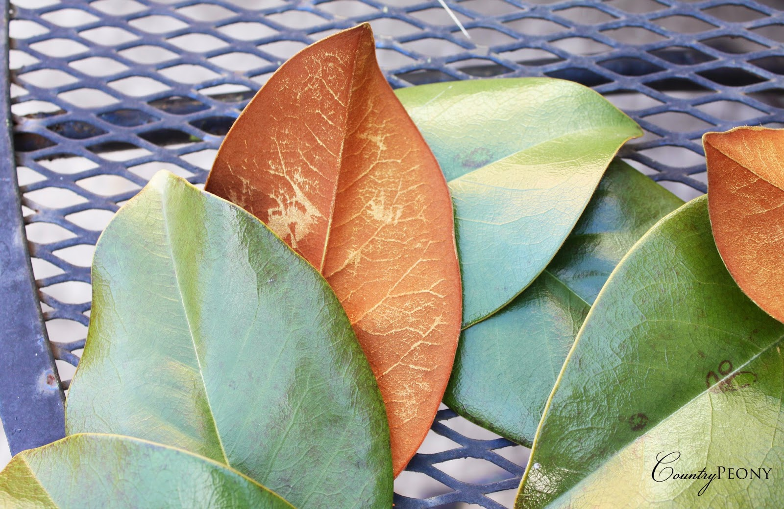 Gold Magnolia Leaf