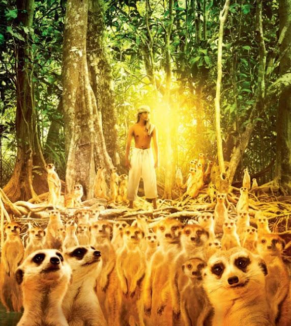 As aventuras de Pi- suricatos