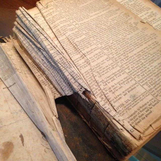 Davis Bible   http://jollettetc.blogspot.com
