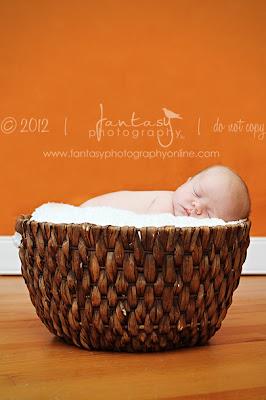 Winston Salem Newborn Photographer   Newborn Photographers in the Triad   Fantasy Photography, LLC