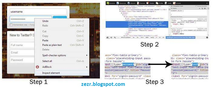 How To Reveal Hidden ‎Passwords In any Web Browsers-zezr