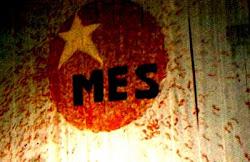 Participa na organização do espólio do MES