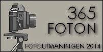 Fotoutmaning 365 foton 2014