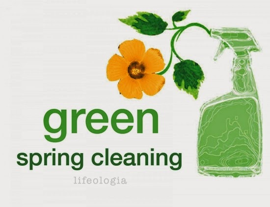 Green House Cleaning Tips For You