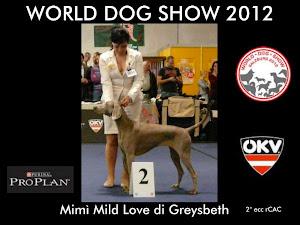 WORLD DOG SHOW SALZBURG 2012 GREYSBETH WEIMARANERS