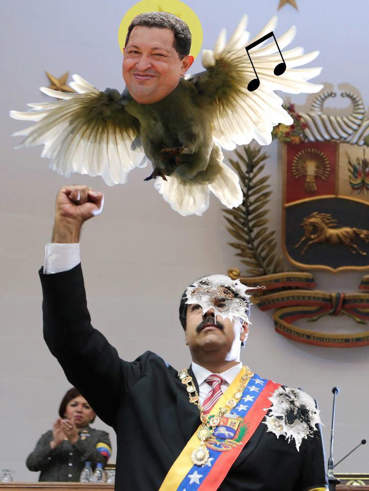 VENEZUELA EL \u0026quot;PAJARITO CHIQUITICO CHAVEZ\u0026quot; SE LE APARECIO A MADURO Y CON SILBIDOS LE DIJO \u0026quot;AHORA COMIENZA LA REVOLUCION MADURO\u0026quot; Y MADURO CONTESTO