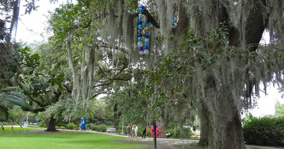 The Bayou Botanist: Jazz, Beignets, and Blue Dog
