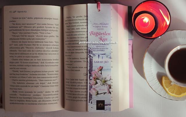Böğürtlen Kışı Kitabı