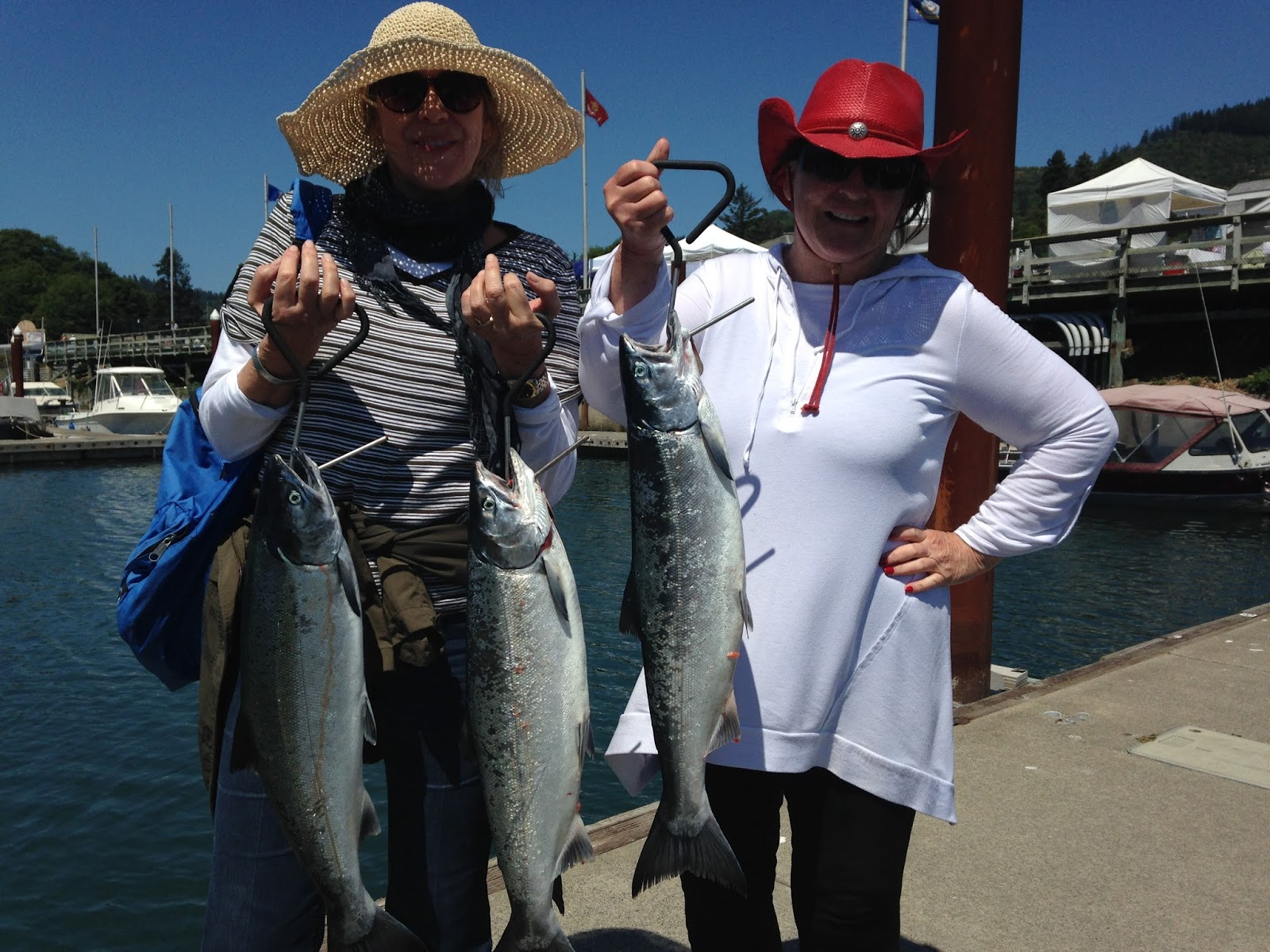Brookings oregon fishing charters salmon starting to for Coos bay fishing charters