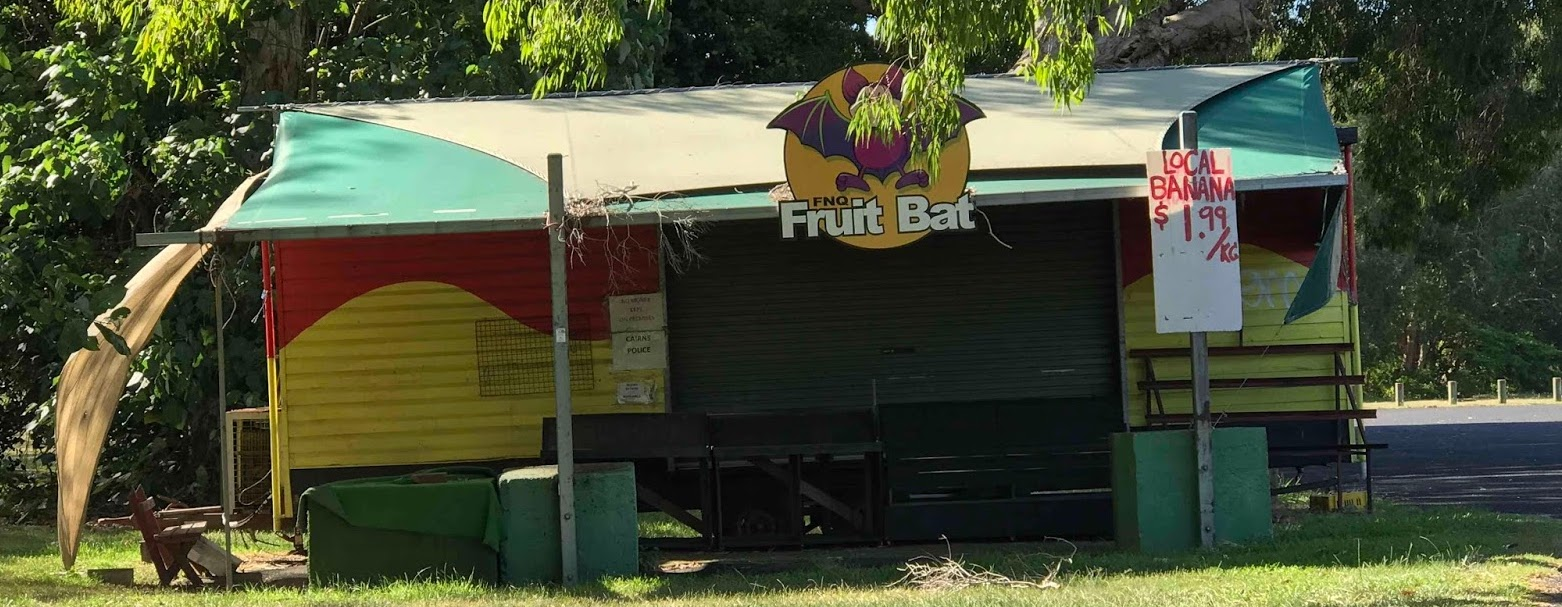FRUIT BAT CRUSHED BY JONSSON FAMILY MARKET