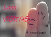 3.000 Visitas