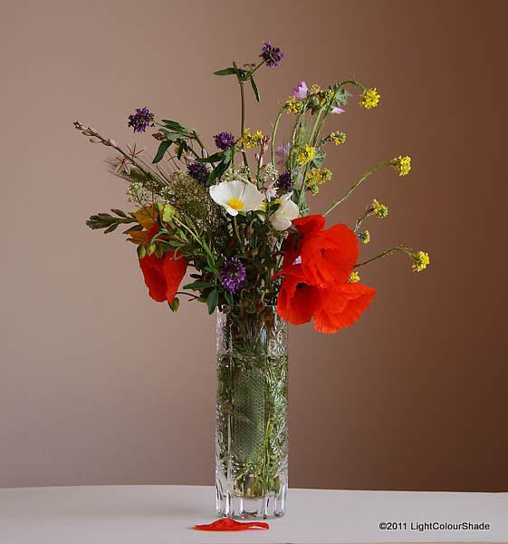 Spring wildflower nosegay in a vase