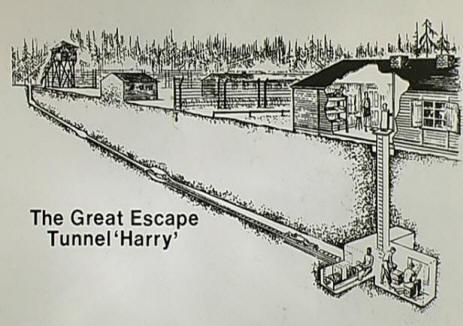 tunnel harry