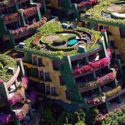 Edificios con jardines y flores por todas partes