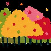 紅葉のイラスト「紅葉した森」