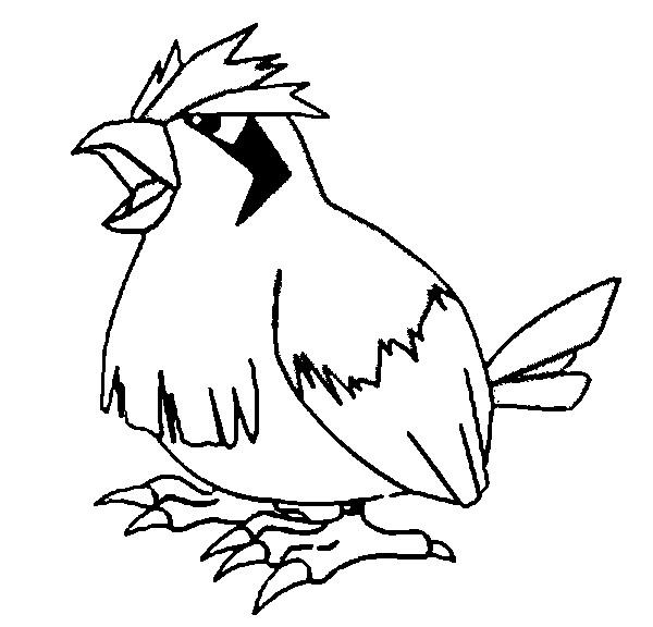 Sonhar e brincar pidgey pokemon for Pidgey coloring page