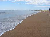 Maine beach