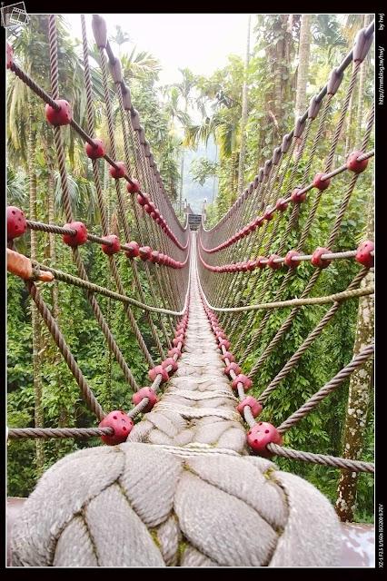 雲林古坑華山-小天梯情人橋