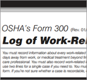 OSHA Form 300 Log of Work Related Injuries and Illnesses Image