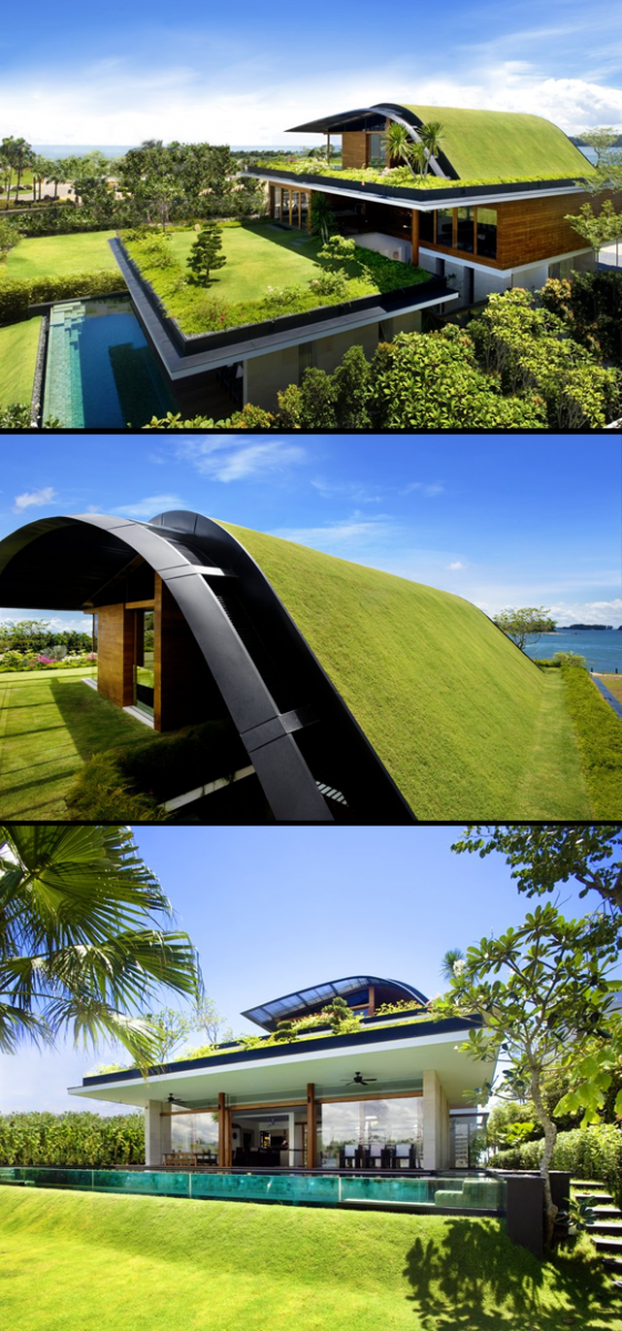 sky garden house This Ugly Old House: Green Roofs part 1 What is a green roof?