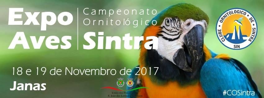 Expo Aves - Campeonato Ornitológico de Sintra