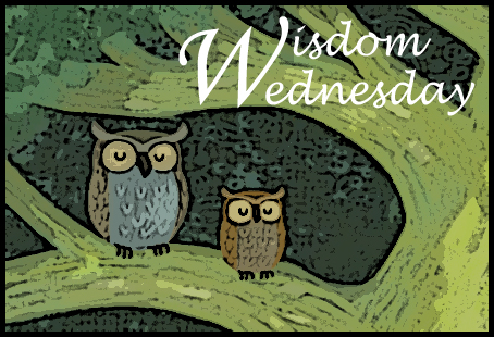 Wisdom Wednesday ~ Chlorine Shower Filter