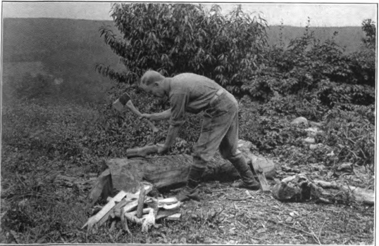Arthur O. Friel chopping firewood