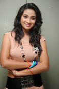 Actress Bhanusri Glamorous Photo shoot-thumbnail-18
