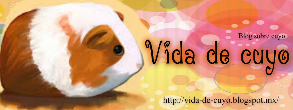 Mi blog sobre cuyos/cobayas: