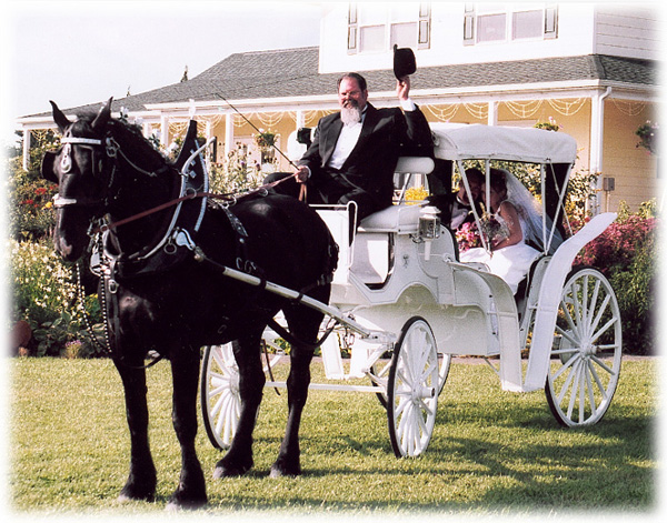 crystal coast gardener tattoo you horse and carriage 600x471