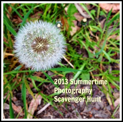 Summertime Photography Scavenger Hunt 2013