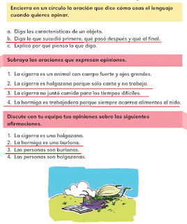 Respuestas Apoyo Primaria Español 2do grado Bloque 1 lección 14 Las opiniones