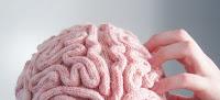 Brain Costume3