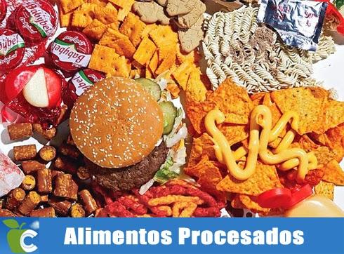 Ortomolecular force seis nutrientes antienvejecimiento 4 probioticos y alimentos fermentados - Alimentos antienvejecimiento ...
