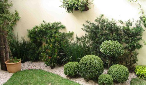 iluminacao para jardim externo : iluminacao para jardim externo:Decoração de Jardim Pequeno Externo – Mundo Social
