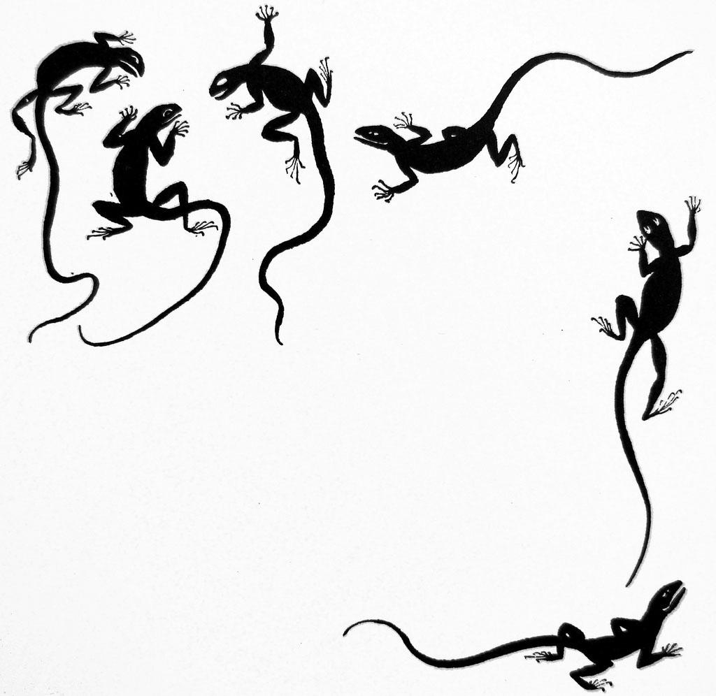 Unknown Artist Il Topo Zorro