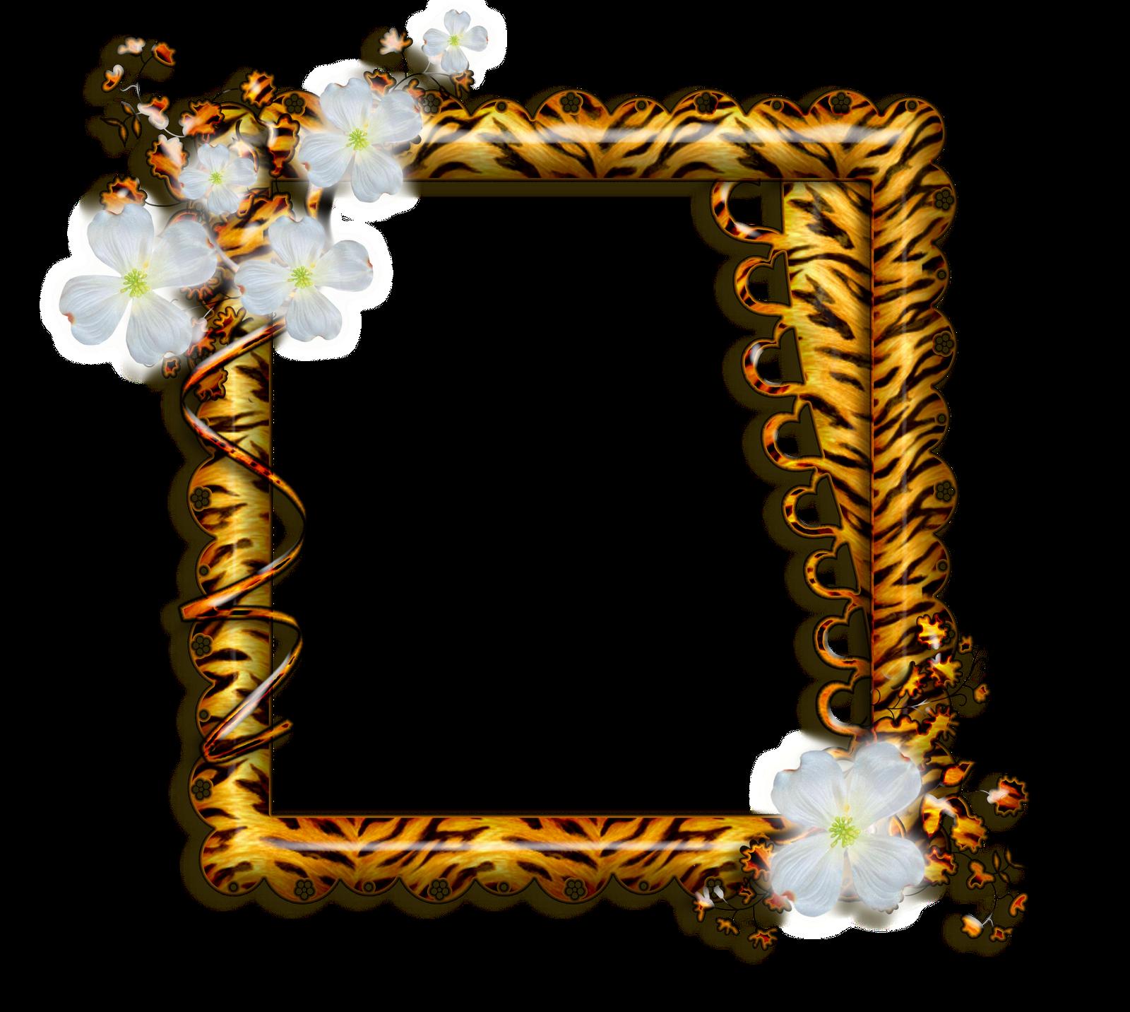 Marcos gratis para fotos marcos para fotos png florales for Marcos de fotos dorados