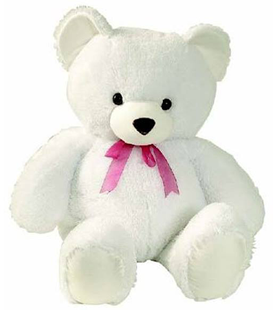 Cute teddy for Facebook