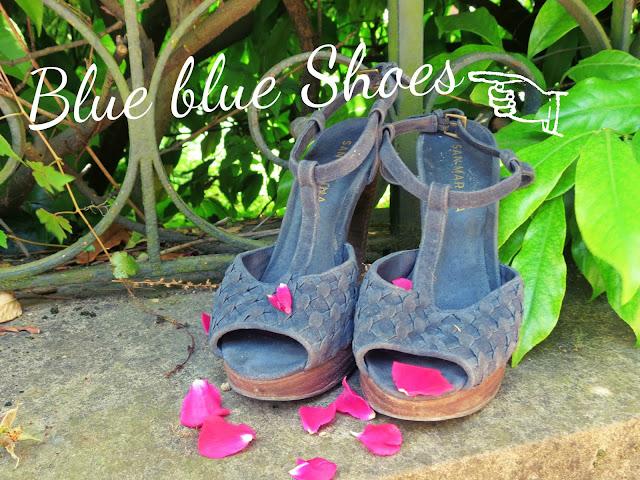 Blue blue shoes
