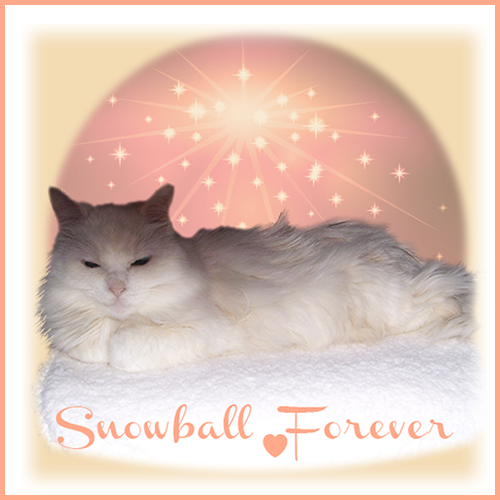R.I.P. Snowball