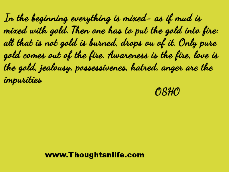 Thoughtsnlife:In the beginning everything is mixed - OSHO