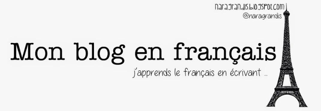 Mon Blog en Français