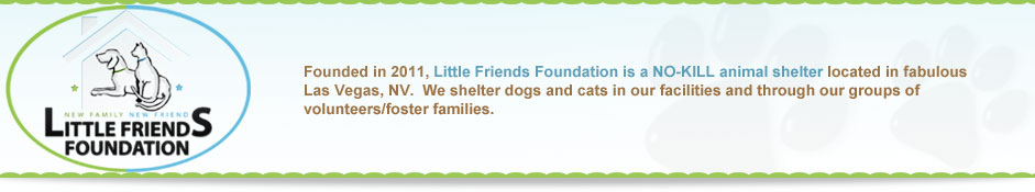 Little Friends Foundation - Las Vegas