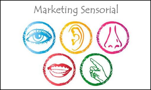 Os sentidos e o Marketing Sensorial